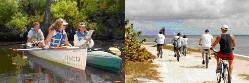 Prácticas en Miami (Florida)_Dragonfly Expeditions