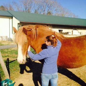 danaska horse